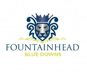 FOUNTAINHEAD Logo_blue downs-01.png